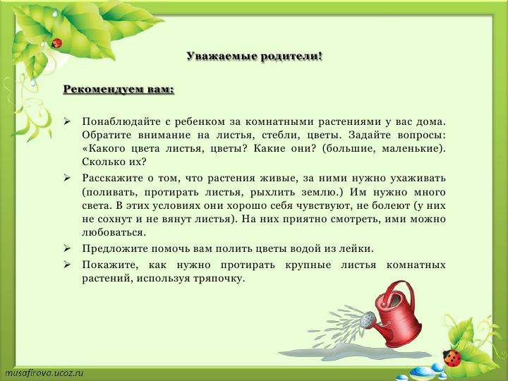С нами зеленые друзья_6