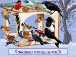 Консультация для родителей  «Покормите птиц зимой»