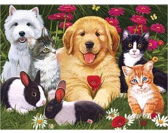 «Мои домашние животные»