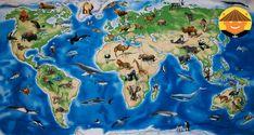 «Животные разных континентов»