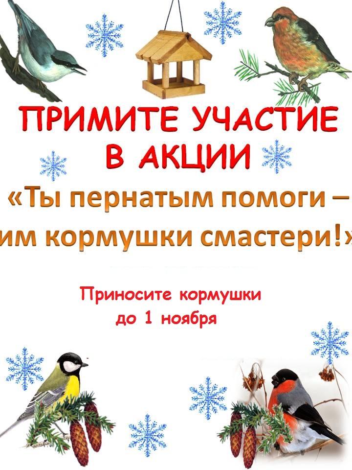 Акция «Кормушки для пташки»
