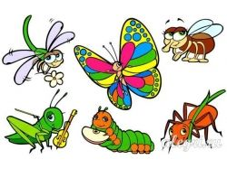 Консультация для родителей «Осторожно, насекомые!»